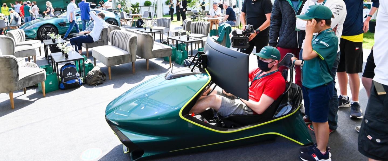 Guests enjoy the AMR-C01 simulator